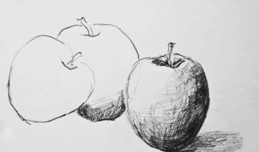 Reihe Zeichnen & Malen: Bleistift und Grafitstift für Stillleben